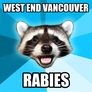 West End Vancouver Urban Wildlife